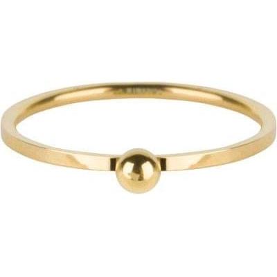 Charmins ring R529.