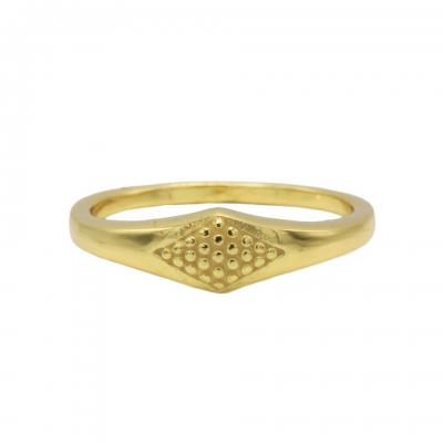 Karma ring signet goldplated.