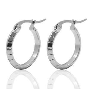 Stainless steel oorbellen 2.